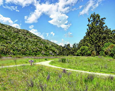 Photograph - Garland Ranch Regional Park by Anthony Dezenzio
