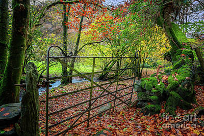 Photograph - Gate To Autumn by Adrian Evans