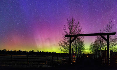 Photograph - Gateway To The Aurora by Cat Connor