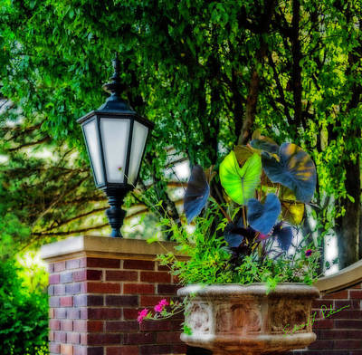 Photograph - Gerald R Ford Birthplace Garden by Edward Peterson