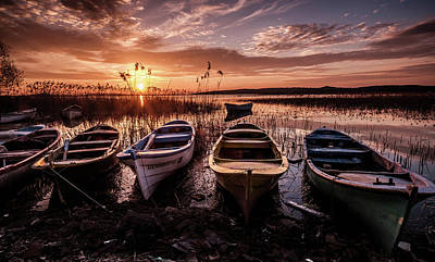 Photograph - Get In Line by Okan YILMAZ