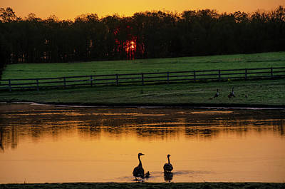 Photograph - Gettysburg Pennsylvania - Sunrise On A Duck Pond by Bill Cannon