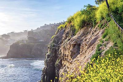 Photograph - Giallo In La Jolla by Joseph S Giacalone