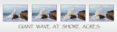 Photograph - Giant Wave At Shore Acres by Wes and Dotty Weber