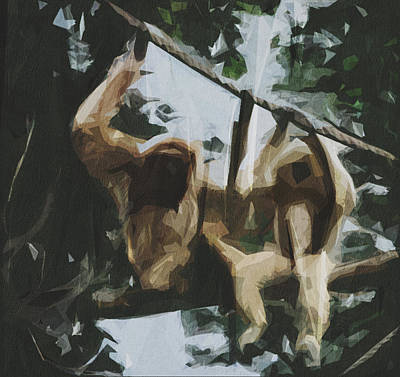 Juan Bosco Forest Animals Royalty Free Images - Gibbons Lesser Apes Mammals Zoo Royalty-Free Image by Draw Sly