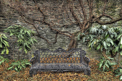 Photograph - Gifford's Bench by Dawn J Benko
