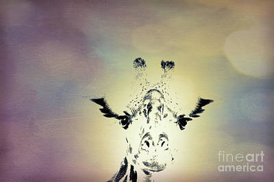 Popstar And Musician Paintings Royalty Free Images - Giraffe Dreaming Royalty-Free Image by Lynn Sprowl