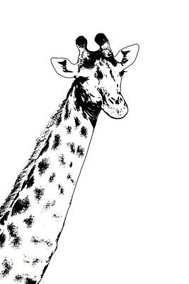 Digital Art - Giraffe In Black And White by Ramona Murdock