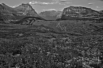 Photograph - Glacier Landscape Of Color Black And White by Adam Jewell