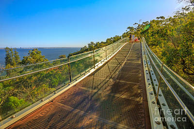 Photograph - Glass Bridge King Park by Benny Marty