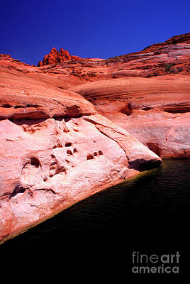 Photograph - Glen Canyon Colors by Thomas R Fletcher