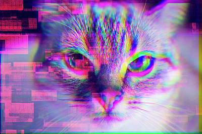 Royalty-Free and Rights-Managed Images - Glitch Art Trippy Cat by Matthias Hauser
