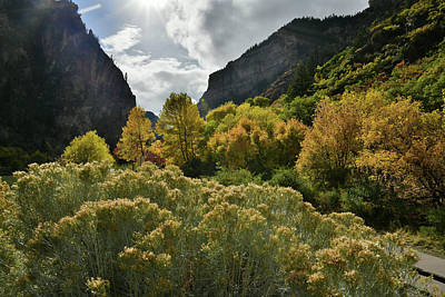 Photograph - Glowing Fall Colors In Glenwood Canyon by Ray Mathis