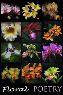 Photograph - Glowing Floral Poetry by Debra and Dave Vanderlaan