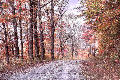 Photograph - Going Home At First Frost by Debra and Dave Vanderlaan