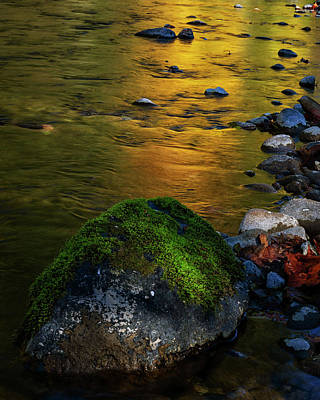 Photograph - Gold Stream by Randy Hall