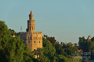 Photograph - Gold Tower And Trees In Seville by Angelo DeVal