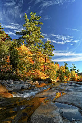 Photograph - Golden Autumn Light Nh by Michael Hubley