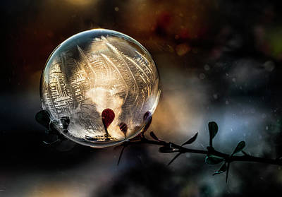 Photograph - Golden Ball by Jaroslaw Blaminsky