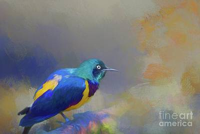 Mixed Media - Golden-breasted Starling by Eva Lechner