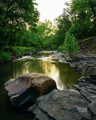 Photograph - Golden Creek by Michael Scott