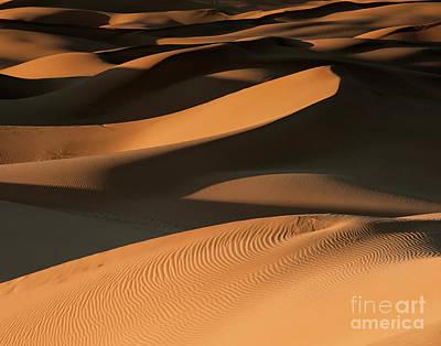 Desert Sunset Wall Art - Photograph - Golden Dunes by Jennifer Magallon
