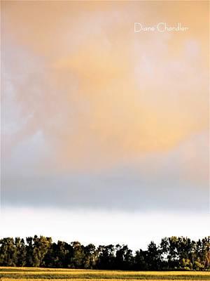 Photograph - Golden Evening by Diane Chandler