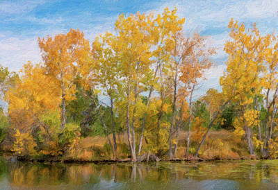 Photograph - Golden Fall Trees Along Pond by Barbara Rogers Nature Inspired Art Photography