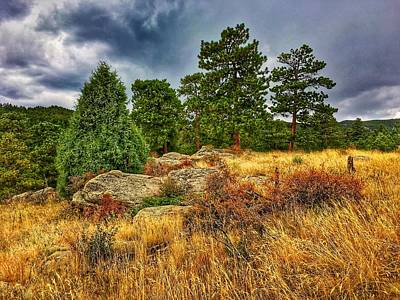 Photograph - Golden Foothills by Dan Miller