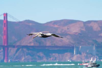 Photograph - Golden Gate Bridge View by Debbie Ann Powell