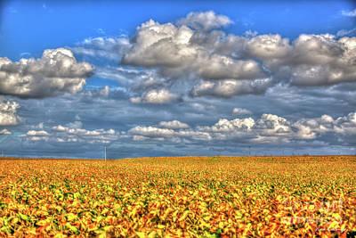 Photograph - Golden Glow Illinois Sow Bean Farming Landscape Art by Reid Callaway