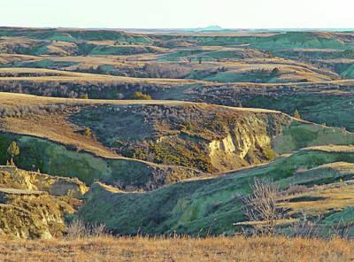 Photograph - Golden Grasslands Enchantment by Cris Fulton
