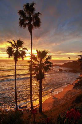 Photograph - Golden Hour Along Heisler Park Trail by Cliff Wassmann