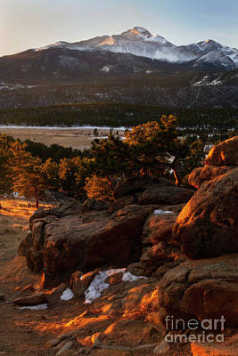 Photograph - Golden Light In Rocky Mountain National Park by Ronda Kimbrow
