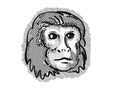 Olympic Sports - Golden Lion Tamarin Monkey Cartoon Retro Drawing by Aloysius Patrimonio