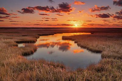 Photograph - Golden Marsh by Michael Blanchette