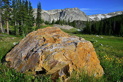 Photograph - Golden Nugget In The Snowy Range by Ray Mathis