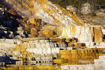 Photograph - Golden Pools by Shawna Fife