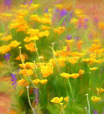 Winter Animals - Golden Poppies by Susan Buscho