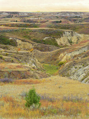 Wall Art - Photograph - Golden September Dakota Reverie by Cris Fulton