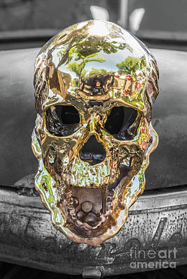 Photograph - Golden Skull by Tony Baca