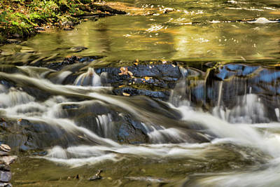 Photograph - Golden Stream by Cathy Kovarik