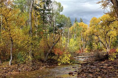Photograph - Golden Stream by Kathleen Bishop