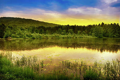 Photograph - Golden Sunset Landscape by Christina Rollo