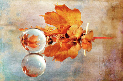 Photograph - Golden Tones Of Fall by Randi Grace Nilsberg
