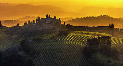 Photograph - Golden Tuscany by Evgeni Dinev