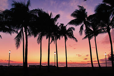 Photograph - Golden Waikiki Sunset by Bodhi Hutton