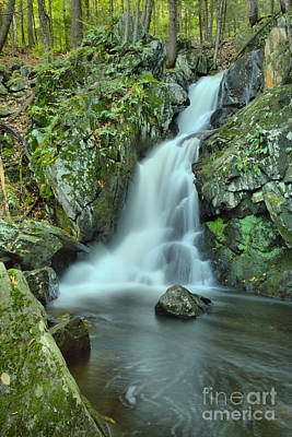 Photograph - Goldmine Brook Falls In The Forest by Adam Jewell
