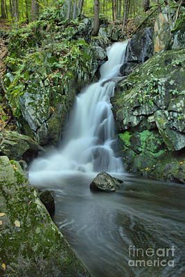 Photograph - Goldmine Brook Falls Portrait by Adam Jewell