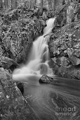 Photograph - Goldmine Brook Falls Portrait Black And White by Adam Jewell